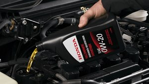 Lowest Price Oil Changes